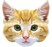 Crystalline Cat Photographic Print