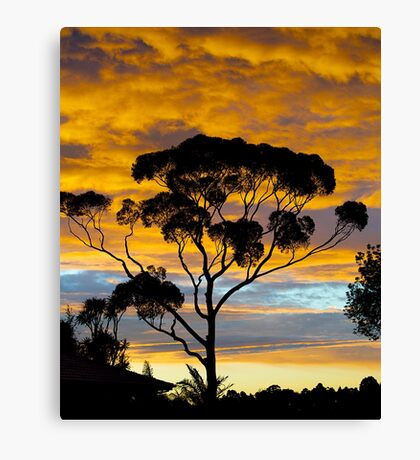 RIP. Sunset from my Kitchen window. Canvas Print