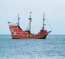 Ahoy matee... by shonna1968