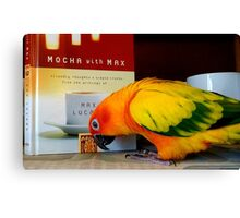 Mmm...Friendly Thoughts And Simple Truths - Sun Conure - NZ Canvas Print