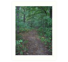 Your Path Art Print
