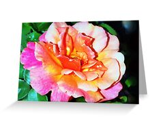 Rain splattered rose Greeting Card
