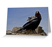 Bird at mount Kilimanjaro Greeting Card