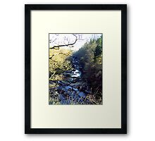 Lanarkshire Burn Framed Print