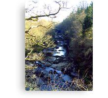 Lanarkshire Burn Canvas Print