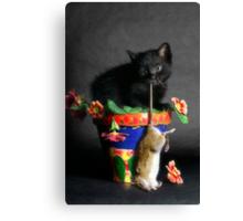Rat Cat Canvas Print