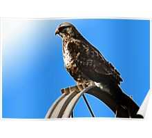Rough-Legged Hawk - Blue Skies Poster