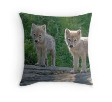 Arctic Wolf Pups  Throw Pillow