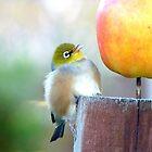 Fun..Fun...Fun...The Big Apple... Silver-Eye Calendar by AndreaEL