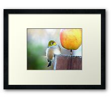 WOW! Is This The Big Apple! - Wax-Eye - NZ Framed Print