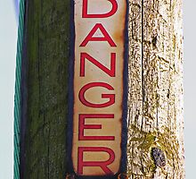 DANGER !!! by Angela Harburn
