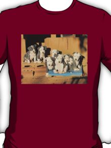 The Gang's All Here! T-Shirt