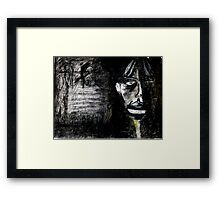 scaramouche (web) Framed Print