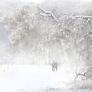 Winter Stroll by Igor Zenin