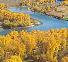 Snake River #2 by Serenity Stewart