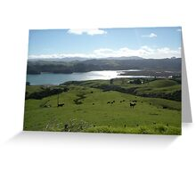 Landscape - Coramundel NZ Greeting Card