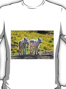 Pair of Arctic Wolves - Montebello, Quebec  T-Shirt