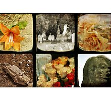 Six Scenes At A Cemetary Photographic Print