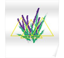 three triangles Poster