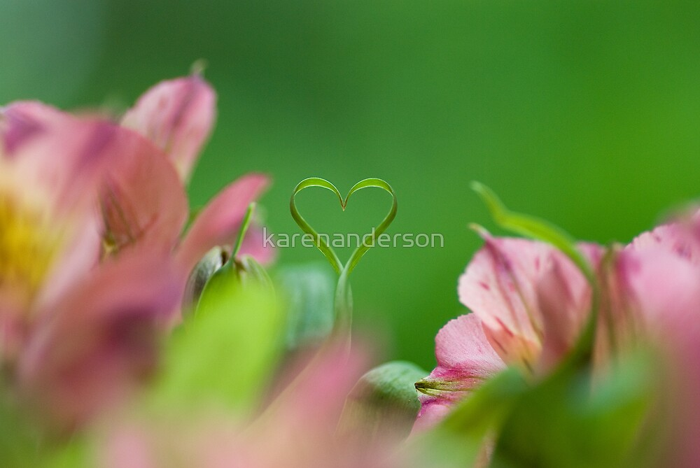 ~ Love will live on and never leave ~  by karenanderson