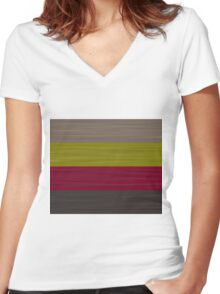 Brush Stroke Stripes: Taupe, Green, Burgundy, and Grey Women's Fitted V-Neck T-Shirt