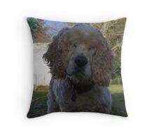 Tobey the Blind Farm Dog Throw Pillow