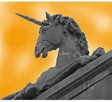 Unicorns Exist! Photographic Print
