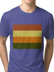 Brush Stroke Stripes: Fall Foliage Tri-blend T-Shirt