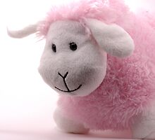 Pink sheep by Kady