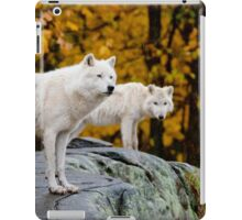Arctic Wolves On Rocks iPad Case/Skin