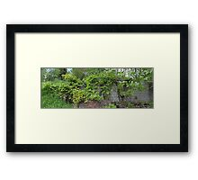 HDR Composite - Abandoned Farmstead Framed Print
