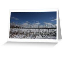 Michigan's winter  Greeting Card