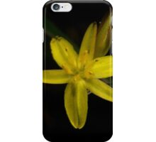 Rush Lily In Flower iPhone Case/Skin