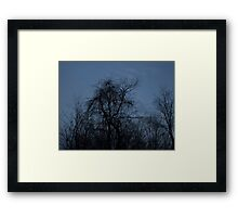 HDR Composite - Backlit Trees and Twilight Framed Print