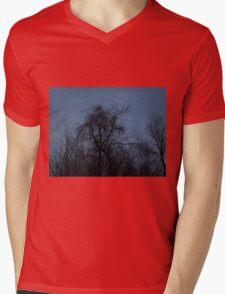 HDR Composite - Backlit Trees and Twilight Mens V-Neck T-Shirt