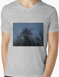 HDR Composite - Backlit Trees and Twilight Mens V-Neck T-Shirt