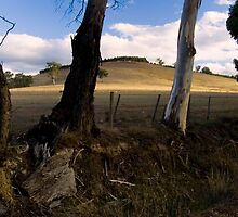 KILMORE, VIC. COUNTRY by hugo