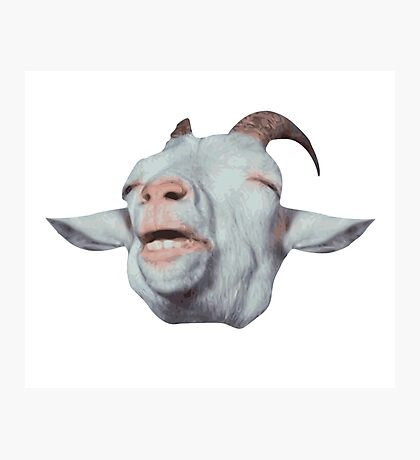 Happy Goat is Faded Photographic Print