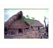 my adoptive home Belize Art Print