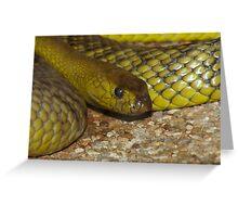 The Worlds Deadliest Land Snake. Greeting Card
