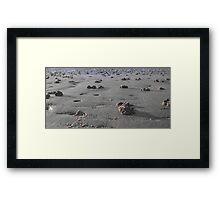 Aliens on Bridlington beach. Framed Print