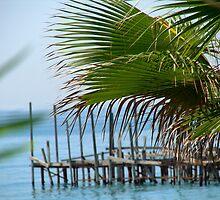 Palm pier by Ian Batterbee