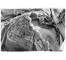 Favorite Rock, Salt Point State Park, California Poster