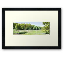 HDR Composite - Blown Out Marshland and Dead Trees Framed Print