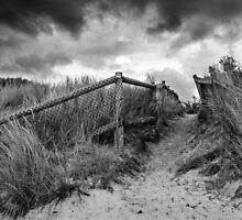 Seaford Beach by Christine  Wilson Photography