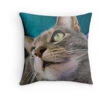 On The Nose Throw Pillow