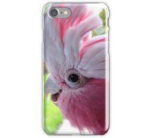 Yipeee! It's Going To Rain...Cockatoo - Rose Breasted/Galah - NZ iPhone Case/Skin
