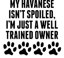 Well Trained Havanese Owner by kwg2200
