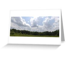 HDR Composite - Brambles in Nature Preserve Greeting Card