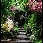 Botanical by Danielle Bloxsom